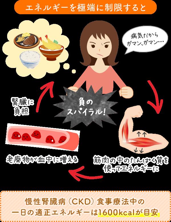 慢性腎臓病(CKD)食事療法中の一日の適正エネルギーは1600kcalが目安
