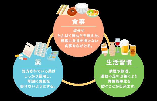 「食事」塩分やたんぱく質などを控えた、腎臓に負担を掛けない食事を心がける。「薬」処方されている薬はしっかり服用し、腎臓に負担を掛けないようにする。「生活習慣病」禁煙や節酒、運動不足の改善により腎機能悪化を防ぐことが出来ます。